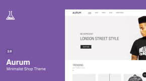 Aurum – Minimalist Shopping Theme